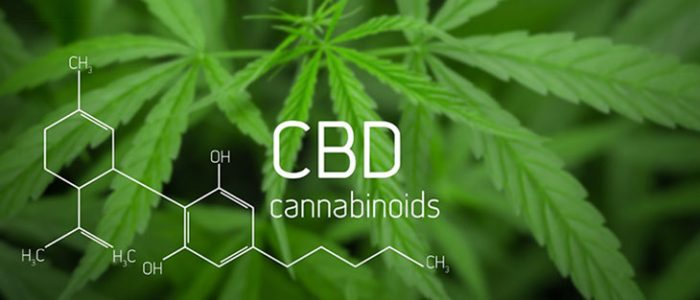 The top burning questions regarding CBD oil