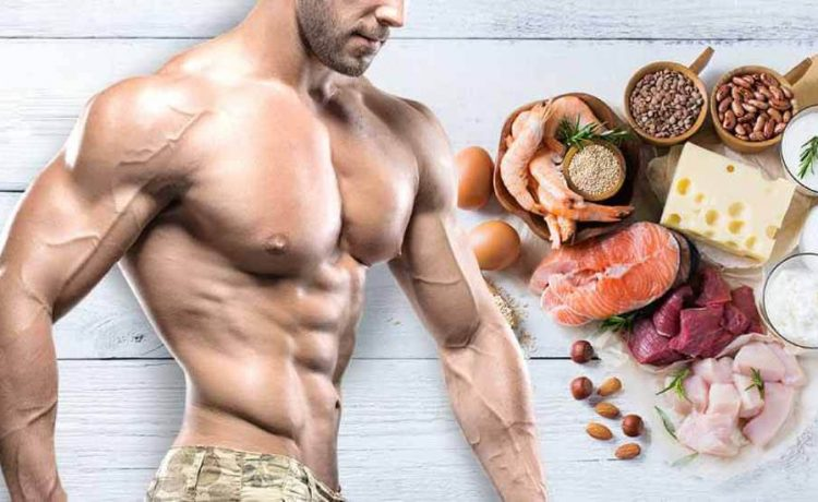 diet plan for muscle building